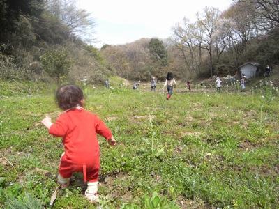 どんぐり農園の畑にはいろんな草が生え、赤ちゃんは遊ぶのに大忙しでした