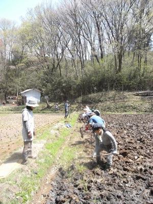 鍬や鋤の数が限られていたため、7人が代わる代わる田んぼに入りました。1枚の田んぼを耕すのに約2時間かかりました