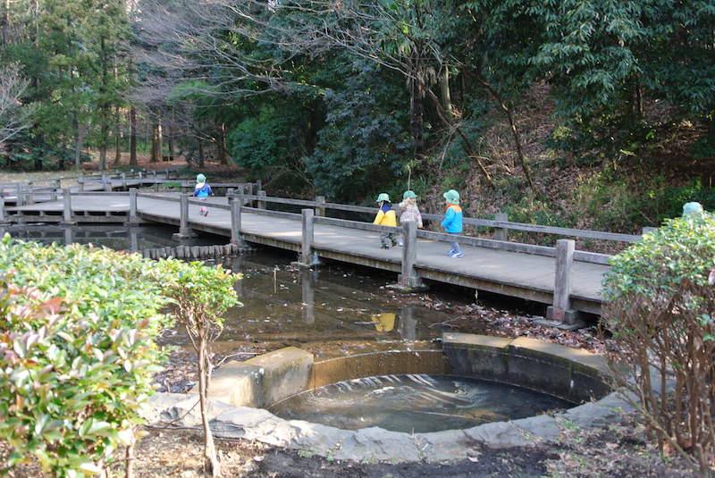 緑道沿いには小さな小川が流れています。季節的に水が流れている時もあるようですが、今は枯れ川で落ち葉がいっぱい!ズボッズボッと落ち葉の小川をみんなで探検!!