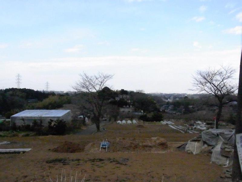 恵泉塾のある丘の景色
