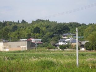 かつて豊かに稲穂が実っていた田んぼは、荒れ放題になっていた(写真提供:井上仁さん)