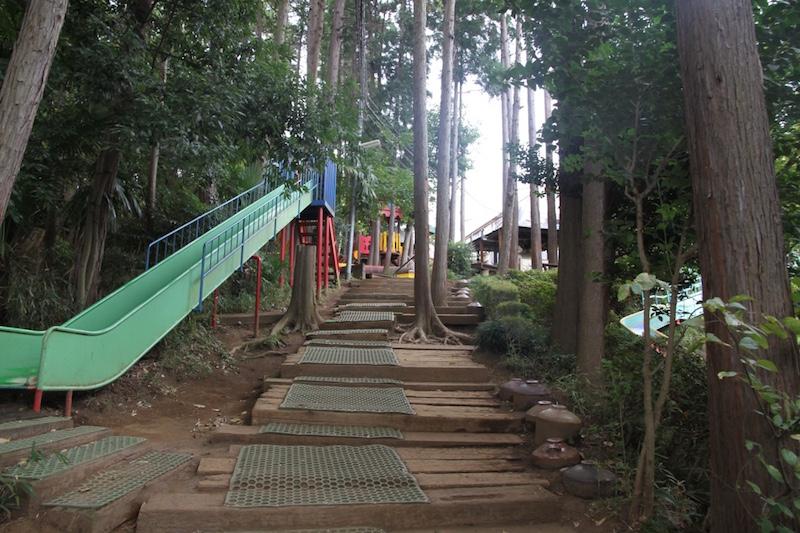 柿の実幼稚園名物の山へ続く道も実は手づくり。たとえ年少さんであっても、天候に関わらず山に登って教室へ向かう