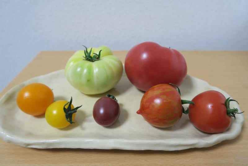 手前右の赤いミニトマトから時計回りに、フルティカ、ベネチアンサンセット、バイオレット、イエローキャロル、シンディーオレンジ、ホワイトパール、ごほうび。白いホワイトパールはトマト独特の酸味があり、勝太さんが大好きなフルティカは野菜と思えないくらい甘い