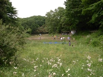 午後は有志たちでいちばん上の田んぼの代かきをしました