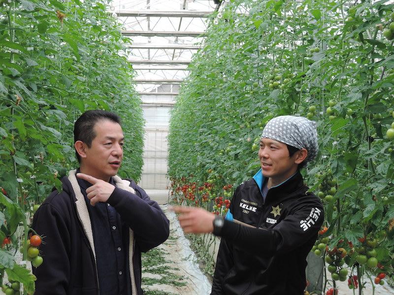 山本泰隆さんは就農10年、2児の父でもある。学者肌で、トマトの栽培技術について語り始めたら止まらない。「やっちゃんは、本当にすごい」と、椿さんも一目おく存在