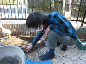 土に還る固化材を使い、花壇を積み上げる作業を黙々とこなす