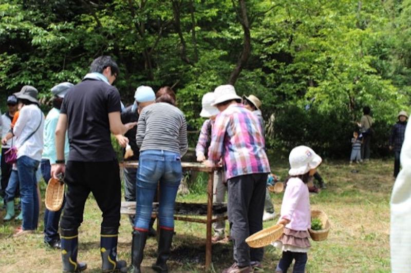 大人も子どもも、それぞれが、思い思いのペースで茶摘みの一日を楽しんでいる