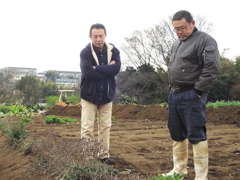「畑に自生するパクチーを見てみますか?」(平本さん)「どれどれ……」(椿さん)