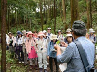 六浦さんから、植物の葉の付き方について説明を受ける参加者たち。普段何気なく見ている植物の葉だが、「互生」「対生」「輪生」「根生」など、いろいろな付き方があり、改めて勉強になった