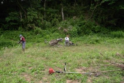 草刈り機で広い畑を除草していきます。